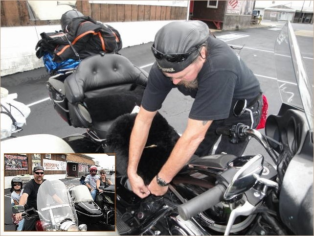 Motorcycle butt buddy